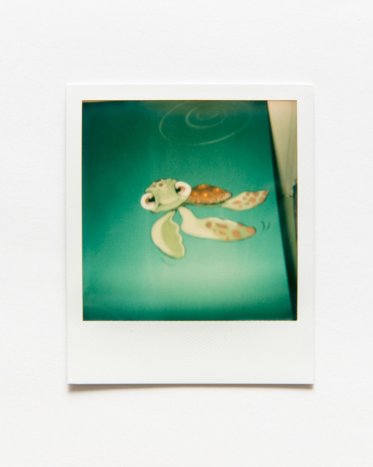 RCH-Polaroid-53